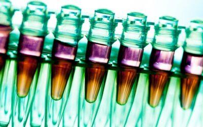 La vacuna de Oxford podría comenzar a ser aplicada a los grupos vulnerables a fin de este año